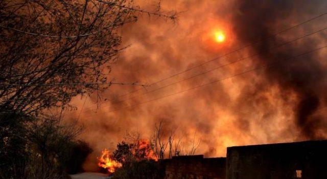 incendio_arraso_entre_8_y_10_hectareas_en_el_carrasco