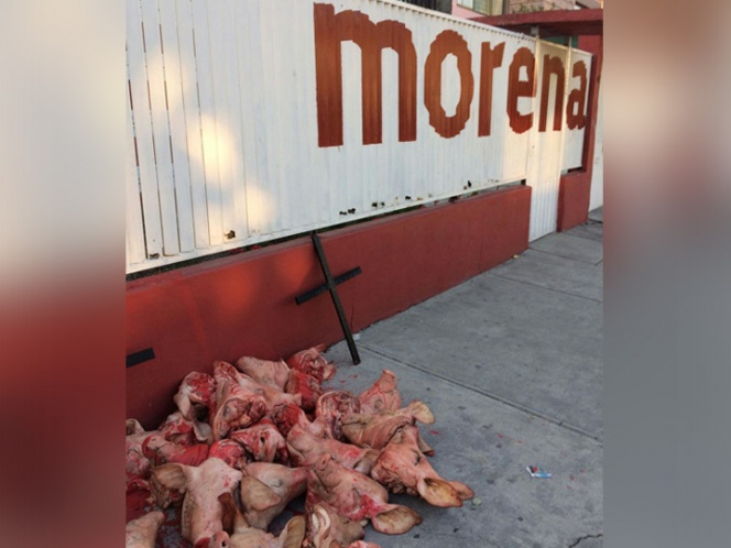 Reportan más cabezas de cerdo frente a oficinas de Morena en Edomex