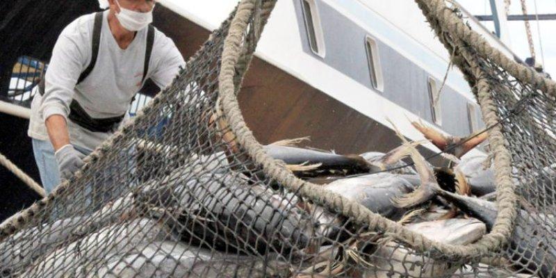 México recibe 'golpe' en 'batalla del atún' con EU