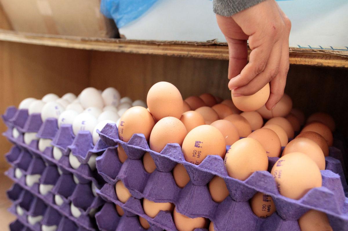 Kilo de huevo llega a los 75 pesos en Tijuana